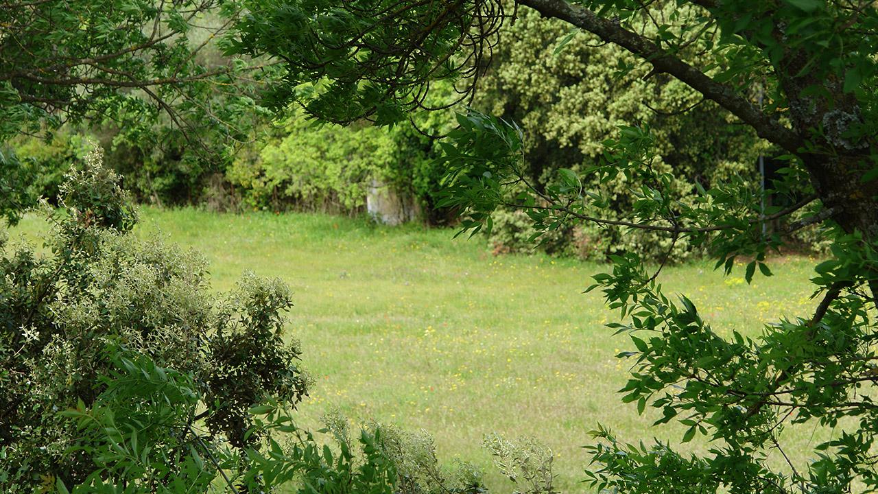 Domaine Lavagnac - Ambiance du lotissement
